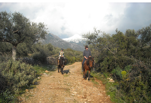 Horse riding and yoga holidays